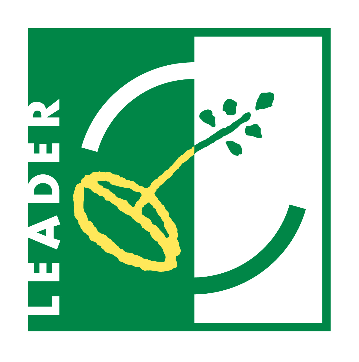 Logo LEADER couleur